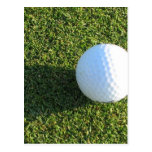 Golf Ball on Golf Green Postcard