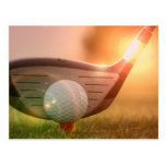 Golf Putter Postcard