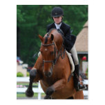 Hunter Horse Show Postcards