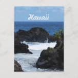 Maui Hawaii Postcard