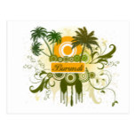 Palm Tree Burundi Postcard