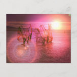 Sunset Windsurfing Postcard
