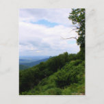 Virginia Landscape Postcard